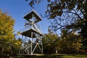 Wieża widokowa - Rezerwat Bukowa Kalenica