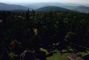 Widok z wieży widokowej - Kalenica